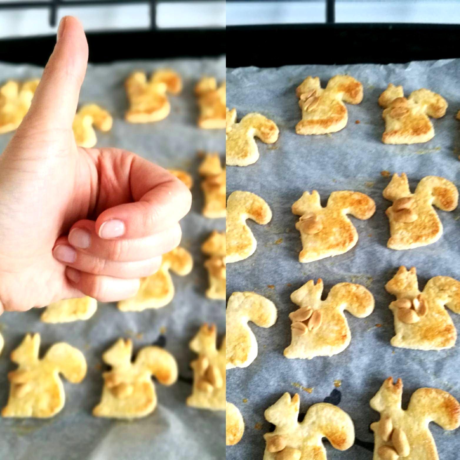 jak zrobić ciasteczka wiewiórki